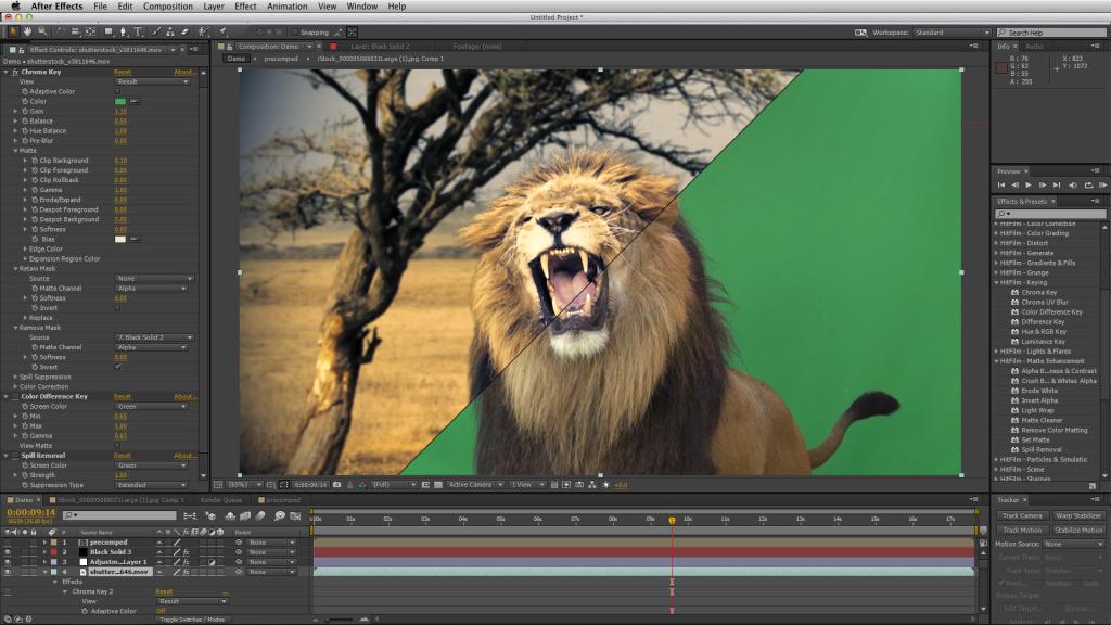 Lion comparison AE